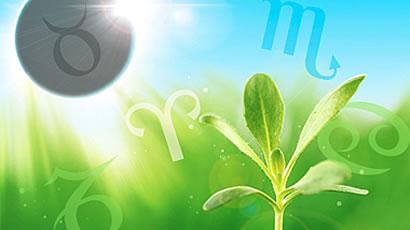 horoskop pomlad 270414