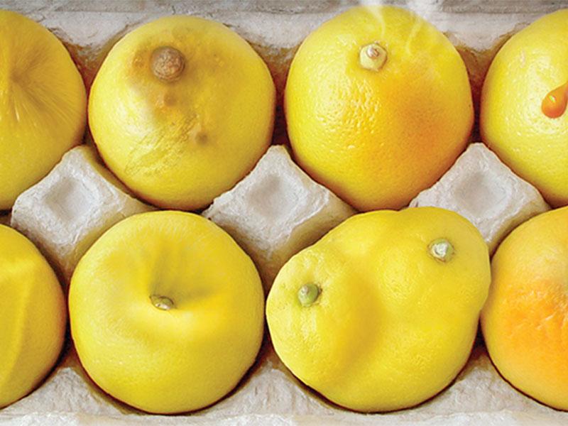limone-rak-dojke